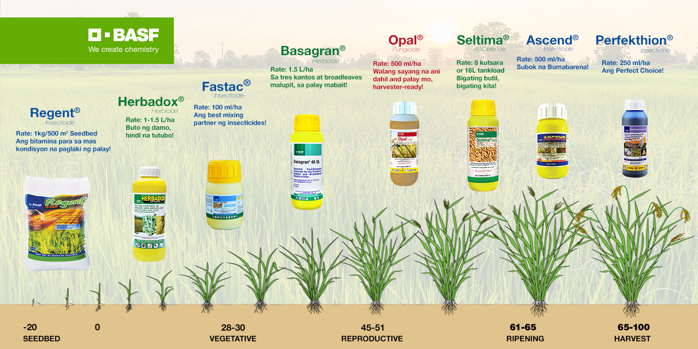 BASF Rice Solutions